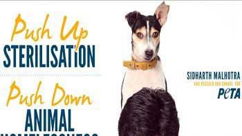 Siddharth Malhotra promotes sterilisation of dogs for PETA