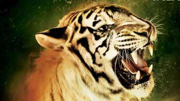 First Weekend Box-Office Collection of 'Roar'