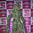 Bolly & TV Celebs at SAB Ke Anokhe Awards 2014
