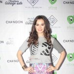 Bollywood and Page 3 Celebs at Evelyn Sharma's Christmas Fun Garage Sale