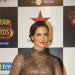 Stars at the BIG STAR Entertainment Awards
