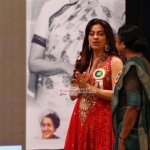 Juhi Chawla and Nawazuddin Siddiqui received the Indira Gandhi Memorial Award